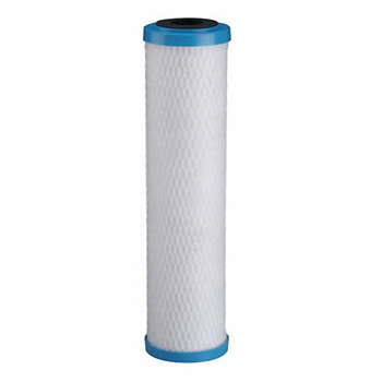 "Pentek ChlorPlus Chloramine Filter 255416-43 10""x2.5"""