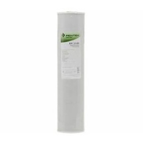 "Pentek RFC20-BB Carbon Water Filter 155247-43 20""x5"""