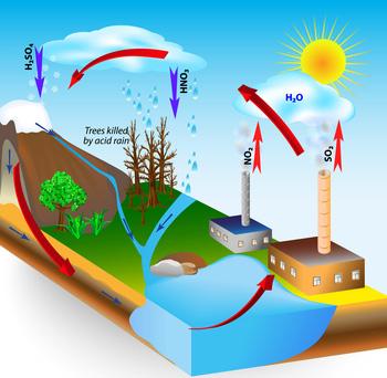 Water pollution, acid rain