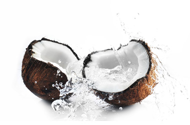 Coconut Shells and Water