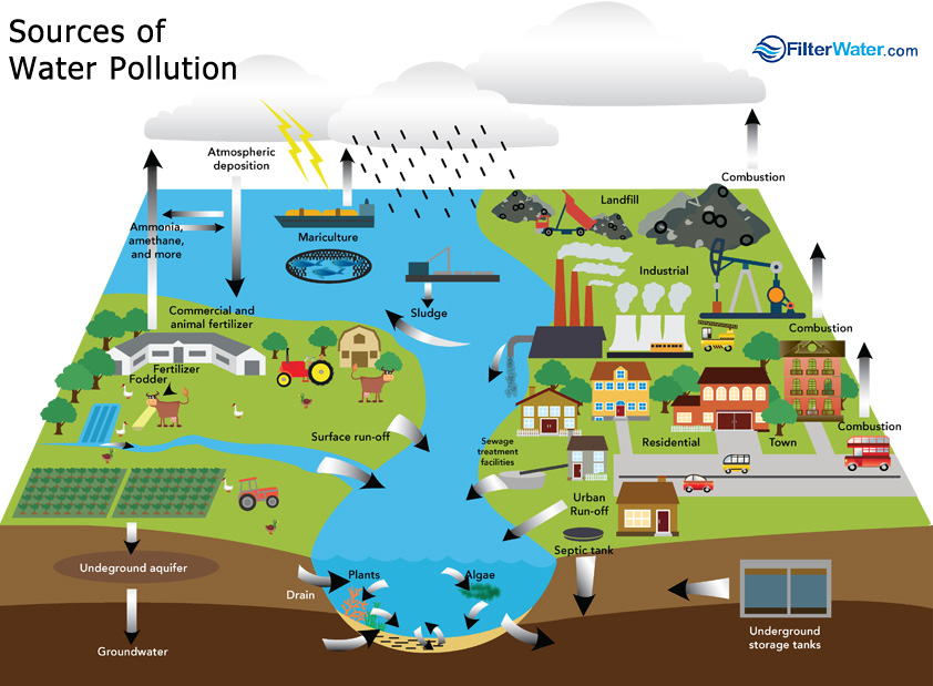 Water Pollution | Filt...