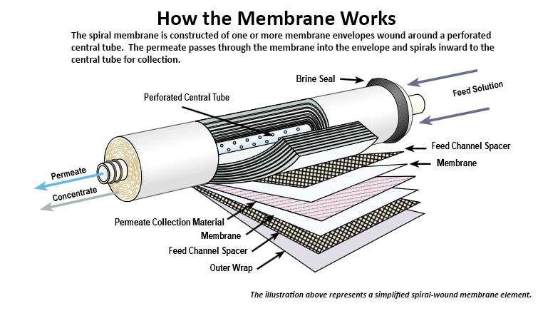 How the Membrane Works